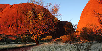 Best Practices: Acknowledgement of Country